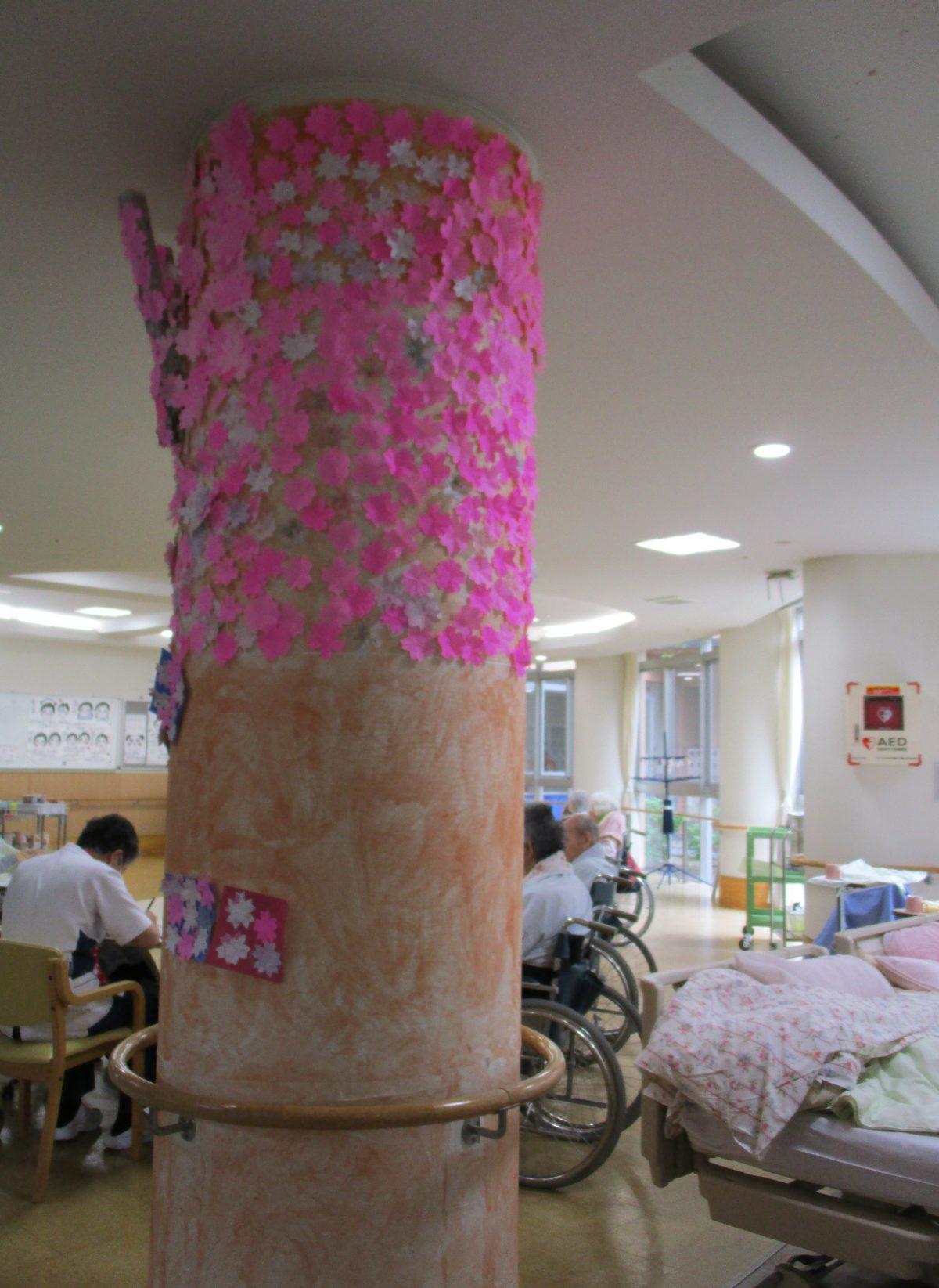 1F病棟に桜の花が咲きました!